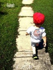 The stroll