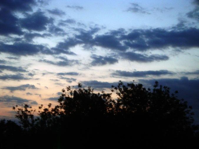 sunrise-2011